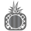 Cocapina logo